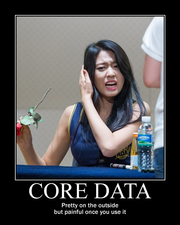 Core Data, pretty on the outside, but painful once you use it